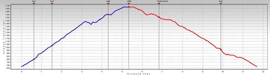 grafico della gita